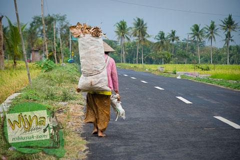 Pulang bersepeda dari Kulon Progo