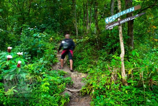 Papan berisikan pesan semangat di dalam hutan agar tetap kuat menuju Grojogan Kali Bulan Bantul