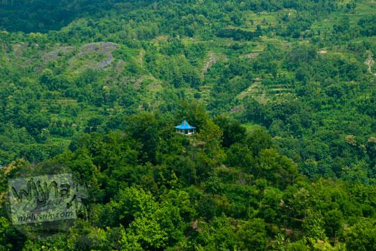 Penampakan bangunan joglo tua keramat di dalam hutan dekat Grojogan Kali Bulan Bantul dilihat dari ketinggian puncak bukit