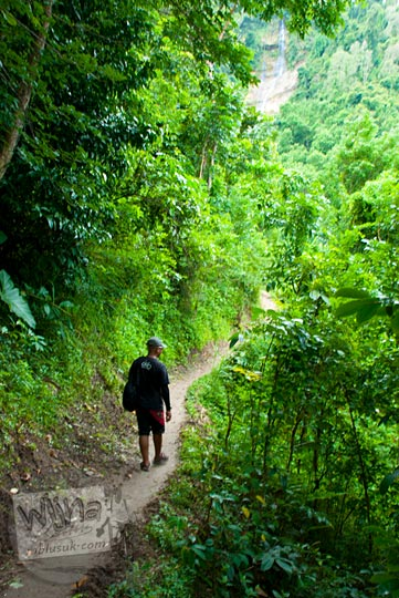 Pemandangan jalan hutan dengan Grojogan Kali Bulan Bantul sebagai latarnya