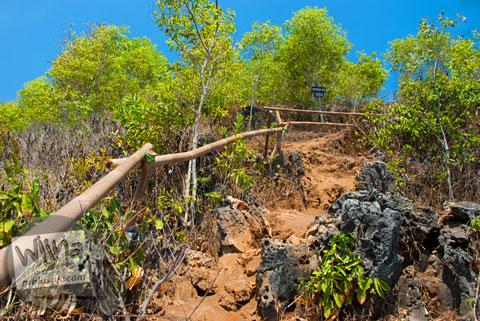 Jalur pendakian dari Pantai Ngrumput ke Bukit Puncak Kosakora, Gunungkidul