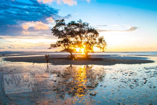 Foto indahnya pesona matahari senja di antara dua pohon di Pantai Tanjung Pendam Belitung di tahun 2016
