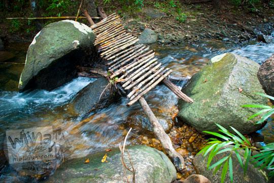 jembatan kecil rusak di jalan setapak Hutan Taman Wisata Alam Batu Mentas menuju air terjun di Belitung Maret 2016