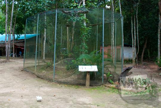 sangkar kandang harga jual tarsius di penangkaran Taman Wisata Alam Batu Mentas di Belitung Maret 2016