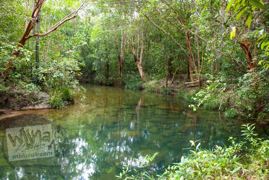 cerita seram suasana Hutan Gunung Tajam yang angker dan sepi hening di kawasan Taman Wisata Alam Batu Mentas di Belitung Maret 2016