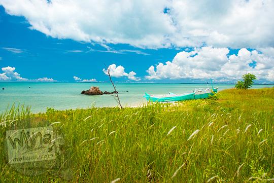 hamparan padang ilalang berlatarkan laut biru dan langit biru cerah di kawasan tersembunyi Pantai Nyiur Melambai di Belitung Timur yang jarang dikunjungi wisatawan pada Maret 2016