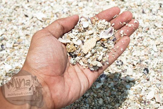 jenis pasir unik khusus khas Pantai Tanjung Tinggi Belitung berupa pecahan kerang karang dan cangkang kepiting makhluk laut tersebar di lokasi pantai tersembunyi pada Maret 2016