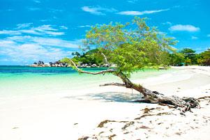 Pantai Tanjung Tinggi pada Suatu Siang yang Terik