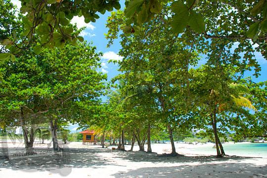 suasana kondisi wujud lokasi parkir kendaraan pengunjung di Pantai Tanjung Tinggi Belitung dinaungi pohon rindang sejuk pada Maret 2016