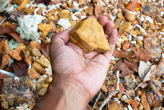 jenis pasir batu cokelat khusus yang banyak terdapat di pantai Bukit Berahu pada Maret 2016