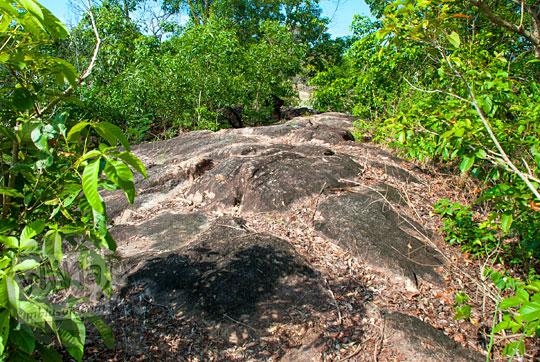 pemandangan di dalam pulau kecil dekat resor Bukit Berahu Tanjung Binga Belitung penuh semak dan hutan pada Maret 2016