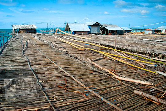 tempat penjemuran ikan asin yang luas di desa nelayan Tanjung Binga Belitung pada Maret 2016