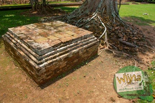 Batu bata yang terjepit akar pohon di Candi Kembar Batu Muaro Jambi di tahun 2015