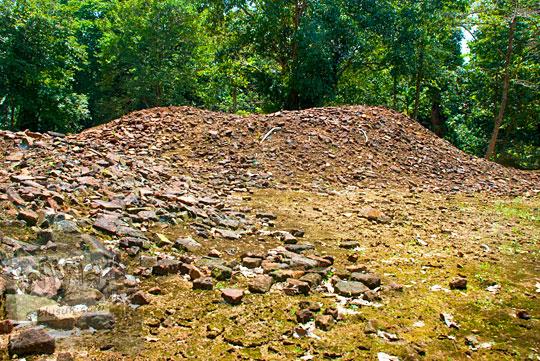 misteri gundukan bukit tanah manepo dan mitos warga setempat terkait temuan emas harta karun Sriwijaya di Candi Sialang Muaro Jambi pada April 2015