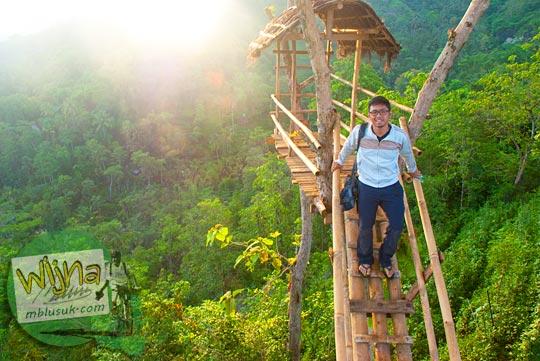 rumah pohon tempat untuk berfoto selfie di Punthuk Gupakan, di Desa Giritengah, Magelang