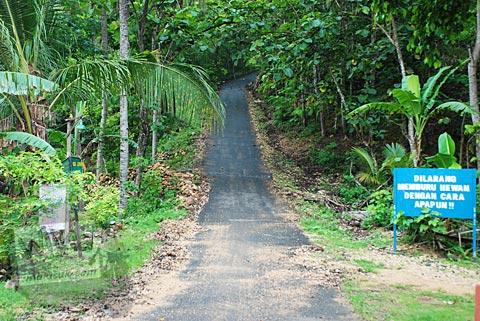 Awal tanjakan ekstrim kedua menuju kawasan Gua Jepang di Pundong, Bantul pada Desember 2015
