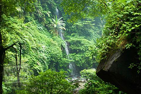 Air terjun kecil atau curug lain yang lokasinya berada dekat tidak jauh dari Curug Cipendok, Banyumas pada tahun 2016
