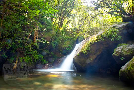 Keindahan suasana damai asri tenang air terjun kecil yang tersembunyi di dalam hutan menyusuri sungai tidak begitu jauh dari dasar Air Terjun Dolo, Besuki, Kediri pada September 2016