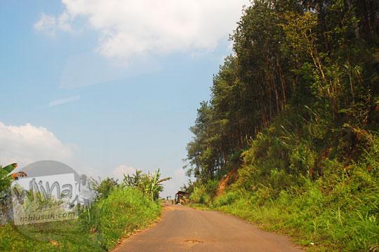 pemandangan medan jalan aspal berwujud tanjakan curam terjal berliku berkabut tebal berbatas tebing longsor dikelilingi hutan arah menuju ke obyek wisata Air Terjun Dolo, Besuki, Kediri pada September 2016
