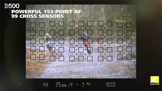 Review DSLR Nikon D500 Powerful 153-Point AF, 99 Cross Sensors