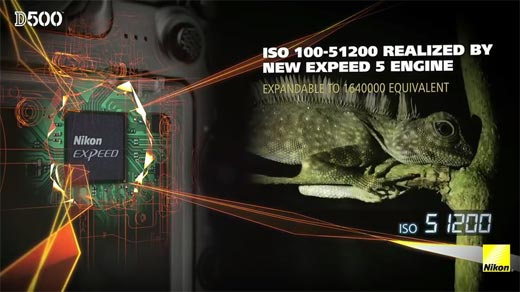Review DSLR Nikon D500 ISO 100-51.200 Realized by New Expeed 5 Engine