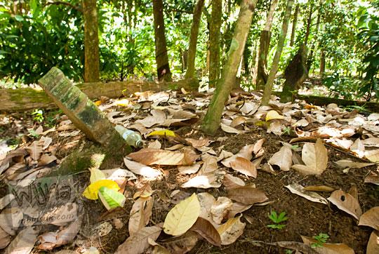 lokasi penampakan wujud makam kuburan tua era peninggalan kerajaan sriwijaya di kompleks percandian muaro jambi pada tahun 2015