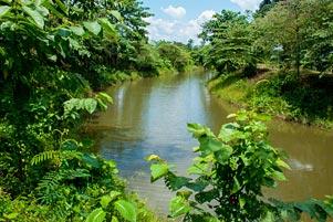 Kanal Tua Sriwijaya dan Si Penunggu yang Menyedihkan itu