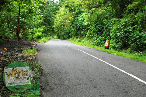 suasana jalan raya samigaluh berbataskan hutan sepi rawan pocong