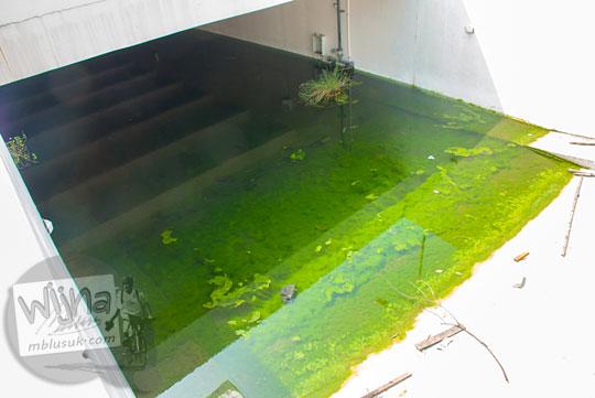 Akses jalan basement di Stadion Utama Riau tergenang oleh air kubangan hujan berwarna hijau sedalam 2 meter jadi sarang ular
