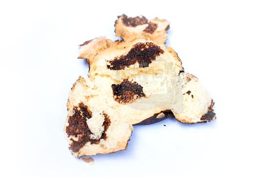 kualitas rasa resep isi roti selai cokelat enak moista bakery