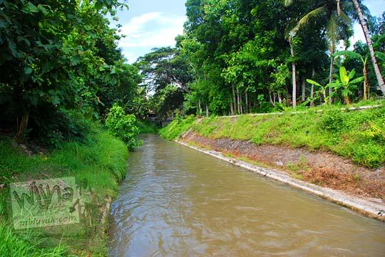 Cabang saluran sekunder Sendang Pitu Selokan Van Der Wijck, Yogyakarta di tahun 2016