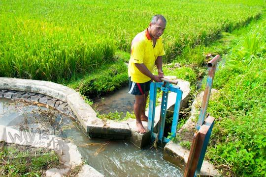 Konflik petani irigasi Selokan Van Der Wijck, Yogyakarta di tahun 2016