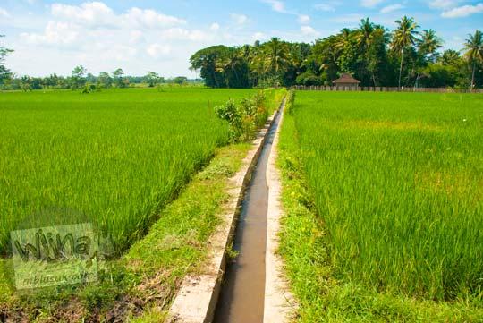 Pasokan air Selokan Van Der Wijck, Yogyakarta yang surut di musim kemarau rentan konflik