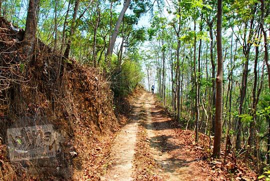Medan jalur jalan hutan di Perbukitan Menoreh ke arah Puncak Moyeng, Kulon Progo