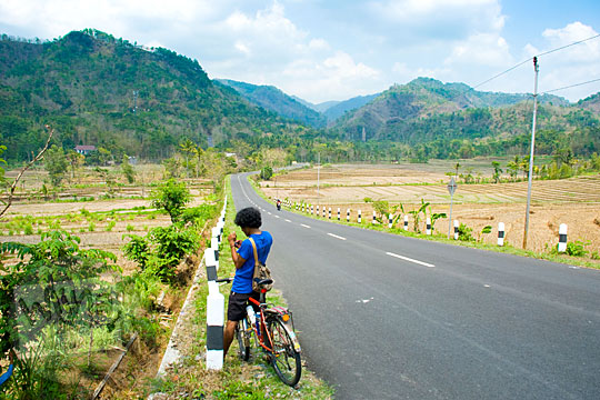 Pemandangan sawah saat musim kemarau di wilayah Girimulyo, Kulon Progo