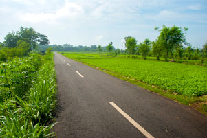 Sepanjang Jalan dari Playen sampai Karangmojo