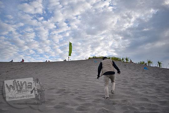 Cowok bersusah payah mendaki bukit tinggi di area Gumuk Pasir Parangkusumo Bantul yang digunakan sebagai lokasi sand boarding pada Agustus 2016