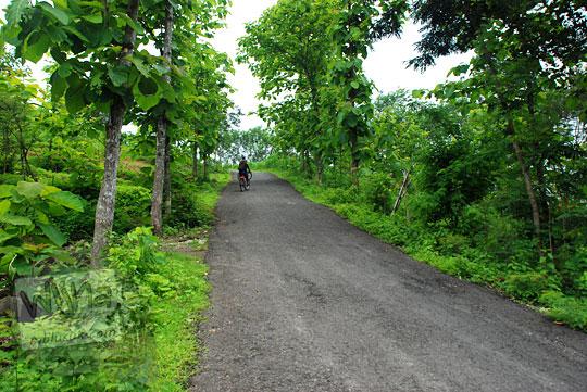 Tanjakan Kaligatuk yang terjal selepas SDN Kaligatuk di Desa Srimulyo, Piyungan, Bantul pada Desember 2015