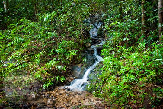 penampakan pemandangan air terjun mungil kecil cantik indah belitung di pinggir jalan aspal hutan saat berkunjung ke air terjun gurok beraye