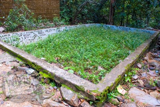 penampakan wujud kondisi terbaru bekas kolam renang terbengkalai ditumbuhi rumput ilalang terkesan angker tidak terawat yang ada di kawasan wisata alam air terjun gurok beraye belitung