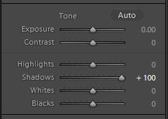 tutorial edit foto penggunaan slider shadow dan fungsi slider black pada adobe Lightroom
