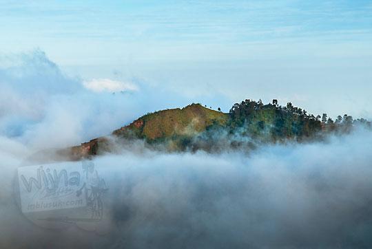 pemandangan puncak bukit yang dikelilingi awan seperti negeri dongeng atau negeri di atas awan dilihat dari puncak Bukit Sikunir Dieng