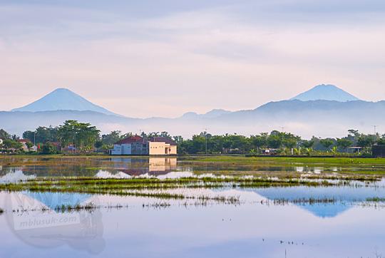 pemandangan langit cerah merona saat pagi berlatar dua gunung sindoro sumbing dilihat dari kebumen