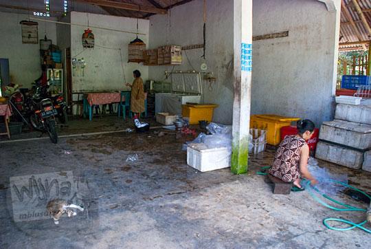warung nelayan tempat jual ikan laut segar bakar goreng enak murah dekat pantai petanahan kebumen