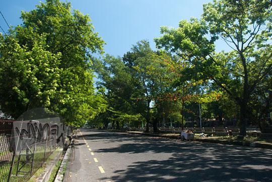 foto suasana teduh pohon rindang di jalan teknika selatan ugm menggunakan filter cpl(w) athabasca