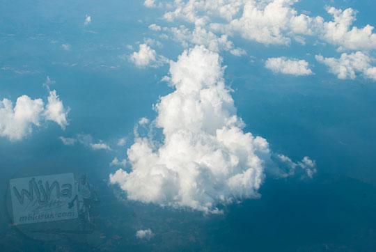 penampakan awan mirip hewan