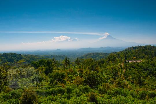 foto pemandangan hutan kulon progo merapi merbabu di kalibawang