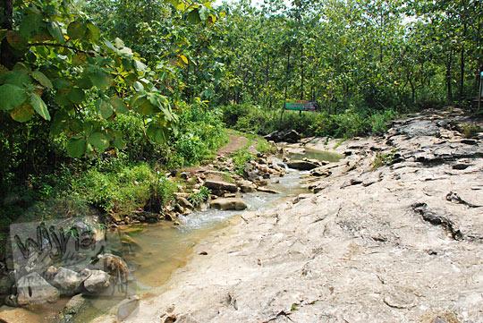 jalan setapak menyusuri sungai berbatu menuju air terjun bangunsari semin candirejo gunungkidul