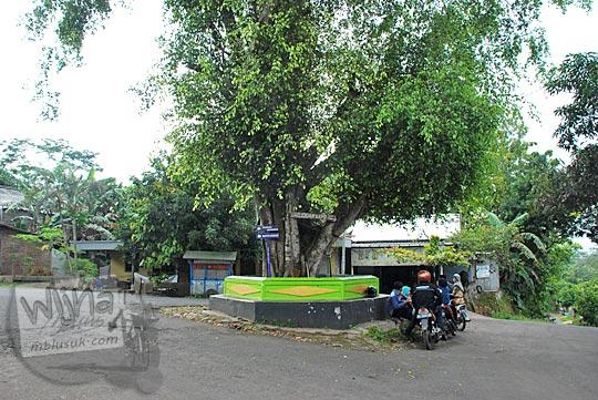 perempatan pohon beringin terong dlingo mangunan patuk cinomati