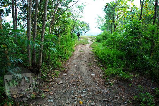 Jalan setapak tanah rusak di lereng perbukitan Piyungan, Bantul yang mengarah ke pinggir tebing
